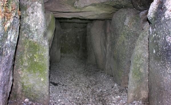 Svino-osterhoj-Jaettestue-06