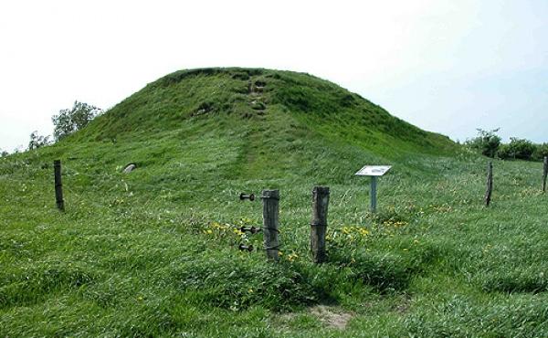 1: Fra Borum Eshøj stammer nogle af verdens bedst bevarede bronzealdersgrave.