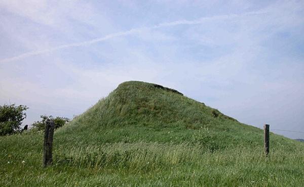 2: Den tilbageværende højkerne fra Borum Eshøj set fra sydvest.