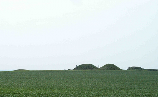 8: Borum Eshøj (t.h.) og de tre genopførte gravhøje set fra nord.