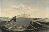 5: Situationsbillede fra 1875-udgravningen af Borum Eshøj med den centrale egekistegrav. (tegn. M. Petersen, Nat.mus)