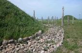 11: Udgravningerne viste at højene havde mange stenlægninger. Her langs foden af den genrejste høj.