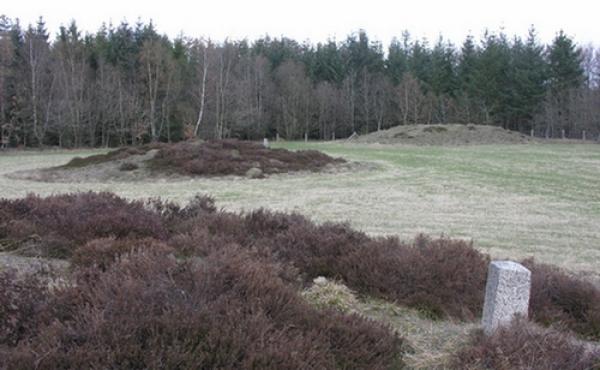 De tre gravhøje mod nordøst set fra syd.