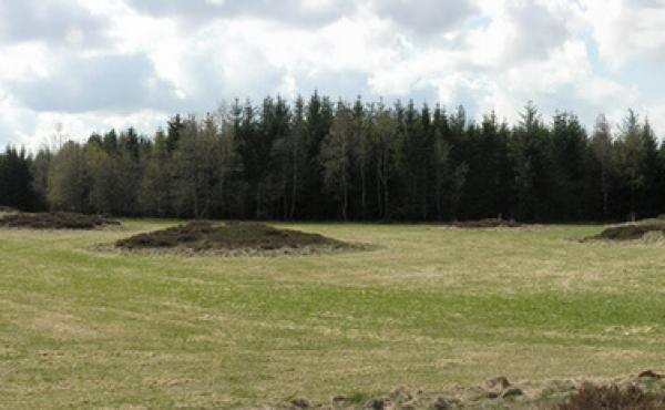 Panorama over Mangehøje - her set fra nord.