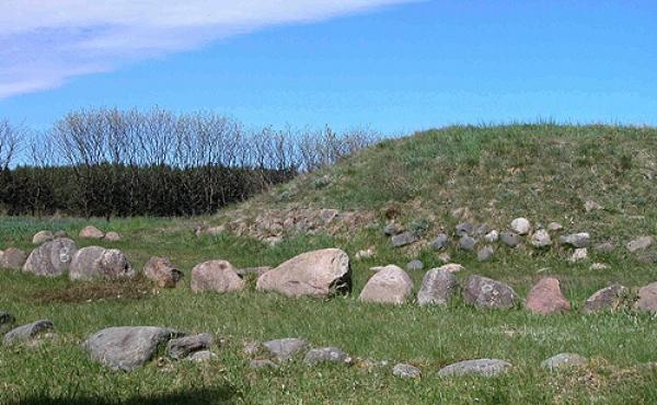 Højen fra Egehøjs første byggefase med stenmur langs højfoden. Stencirklerne omkring højen markerer de senere højfaser.