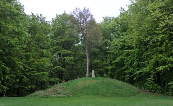 3: Da gravhøjen blev opført i bronzealderen var området nærmere et overdrevslandskab.