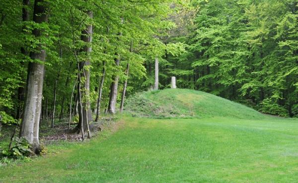 4: En lille og sikkert afgravet høj ses i skovskellet foran den store høj.