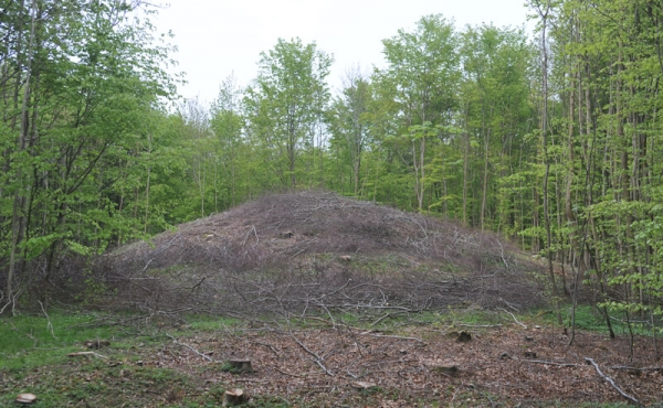 10: Mortenshøj er også en stor høj i skoven syd for Samlingspladsen.