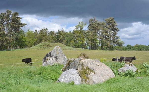 9: Langdysse og gravhøj set fra stien syd for fortidsminderne.