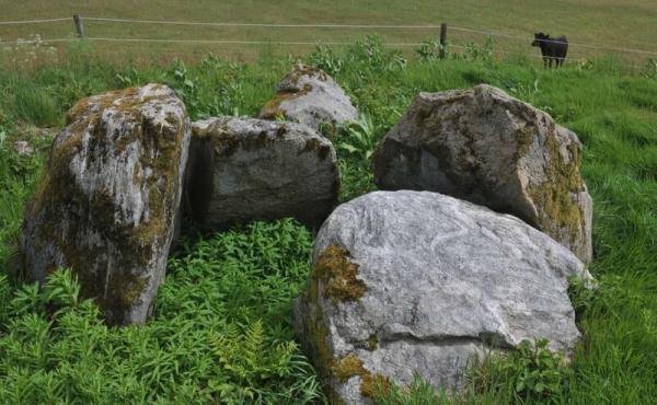 10: 4 bæresten er tilbage fra det oprindeligt jorddækkede kammer i nordenden af langdyssen.