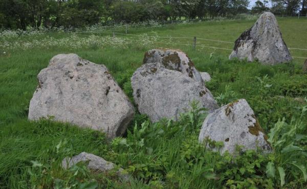 11: Gravkammeret set fra sydøst. Til højre en stor stævnsten fra randsten langs langdyssens nordlige højende.