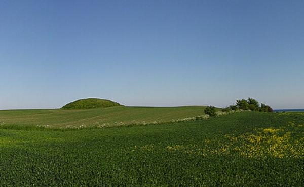 1: Panorama set fra nordvest over marken med den sidste tilbageværende høj fra bronzealderens højgruppe. Til højre for højen ind mod markskellet ses forhøjningen fra en af de 9 øvrige kendte overpløjede gravhøje tydeligt.