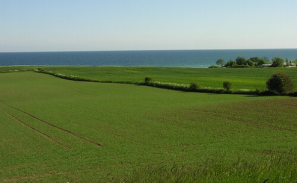 3: Fra højen er der en impone- rende flot udsigt mod syd over Østersøen.