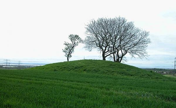 1: Fra Loddenhøj på marken øst for vejen er der stadig en flot udsigt over Århus Bugten og Kalø Vig.