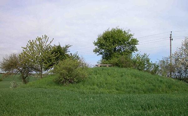 5: Hjortshøj set fra sydøst.
