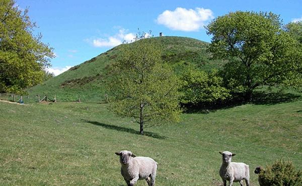 2: Hohøj - Danmarks største gravhøj set fra sydvest.