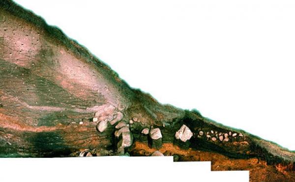 6: Sammensat foto af det 15 m lange snit ind i Hohøj, som både daterede højen og gav mange værdifulde oplysninger om dens opbygning.