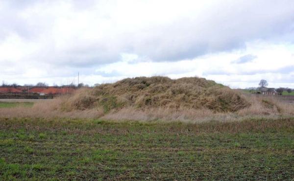 2: Gravhøjen ligger ganske tæt på nutidens parcelhusområde. Her set fra nordøst.