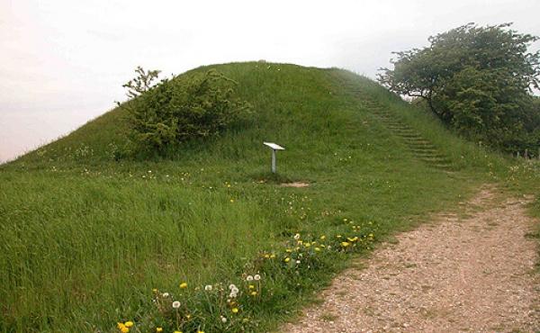 1: Jelshøj er en af de store gravhøje fra bronzealderens begyndelse. Her set fra vest.