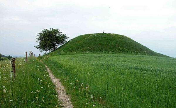 3: Østsiden af Jelshøj med stien som fører videre gennem Holme Bjerge.