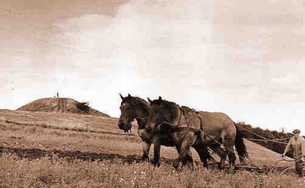4: Et billede fra en svunden tid. Søren Jelsbak pløjer sine marker ved Jelshøj (nov. 1935).