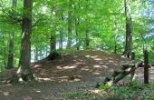1: Klinteskoven er rig på især gravhøje fra bronzealderen. Højene er i kraft af skoven for en stor del bevaret i store grupper modsat på åbent land, hvor størstedelen af højene gennem tiden er blevet sløjfet. Her en stor velbevaret bronzealdersgravhøj fra højgruppen i nordsiden af