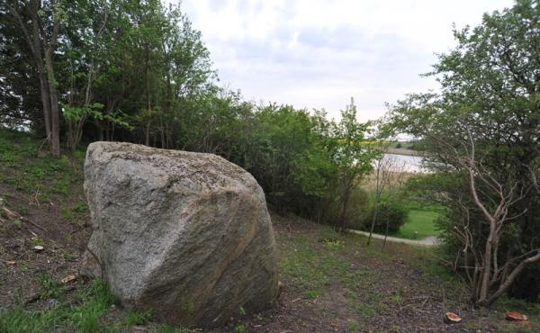 6: Sagnet fortæller, at det er fra stenen at de små børn kommer.