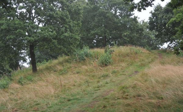 De 3 gravhøje ved Molbjerg blev anlagt på en lav naturlig forhøjning omgivet af det gamle Kolindsund. Her den nordligste af højene set fra sydvest.