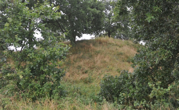Af de 3 gravhøje er den sydligste den største. Her set fra sydøst.