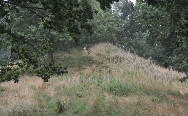 Den mellemste af de 3 gravhøje set fra sydvest.