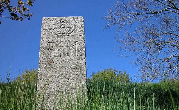 5: Fredningsstenen på sydøstsiden af Møgelhøj.