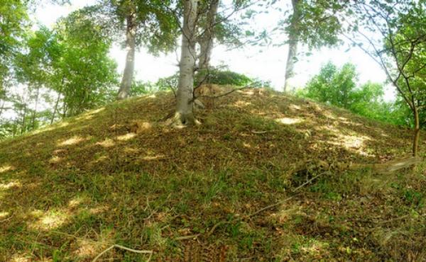 2: Panorama over den østlige udgravede høj i Oreby Skov set fra syd.
