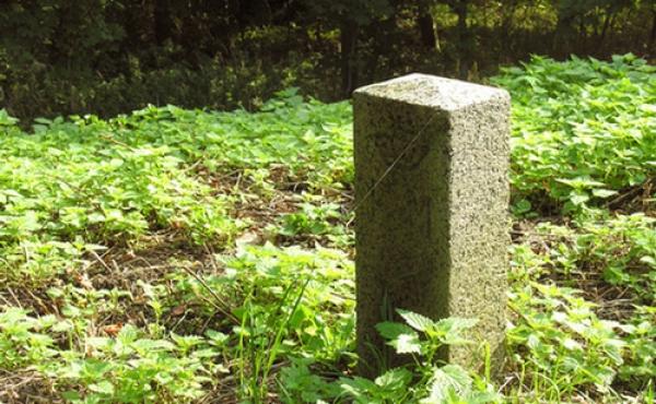 9: Fredningsstenen på højtoppen markerer den frivillige fredning i 1878.