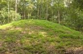 1: Den vestligste af de to flotte bronzealdersgravhøje i Oreby Skov ligger helt ud til skovvejen. Klik på billedet for stor udgave.