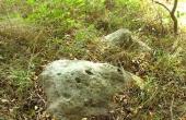 5: Sten med skåltegn ca. 10 m. syd for højen.