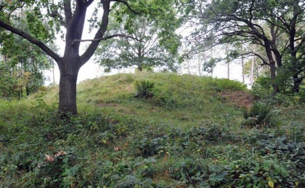 1: En af områdets flotte gravhøje fra bronzealderen.