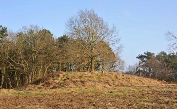 11 En af de store bronzealdergravhøje i områdets vestlige del.