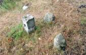 7: Gammel skelsten ved en af gravhøjene med enkelte randsten langs højfoden.