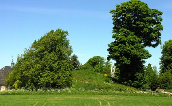 1: Sneglehøj ved Østergård set fra syd. Højen er den sidste