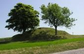 1: Bronzealdersgravhøjen