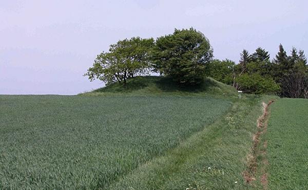 2: Trampestien som fra den syd for liggende P-niche leder frem til højen.