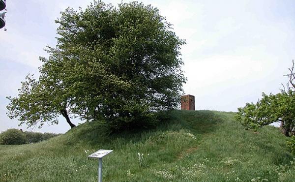 4: Højen er sikkert mellem 3.800 og 3.000 år gammel. Her set fra sydøst.