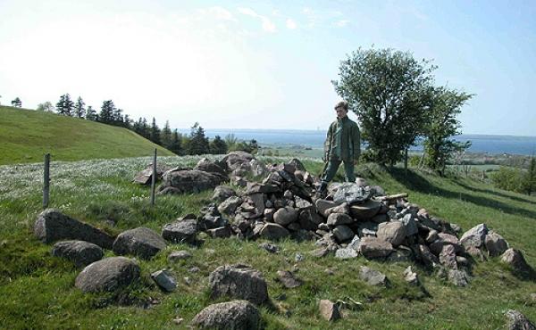 9: Stendyngen mellem de to Stabelhøje stammer sikkert fra de mange nu udslettede gravhøje i området.