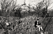 2: Fra den store nu helt fjernede stenrøse som lå nord i skoven. Foto fra omkring 1920.