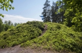 4: Ved den store Hjølund Høj i vestsiden af Stenholt Krat findes en helt række af høje på højdedraget øst og nord om Bølling Sø. Højene har sikkert også fungeret som vejviser-høje i oldtidens ufremkommelige landskab.
