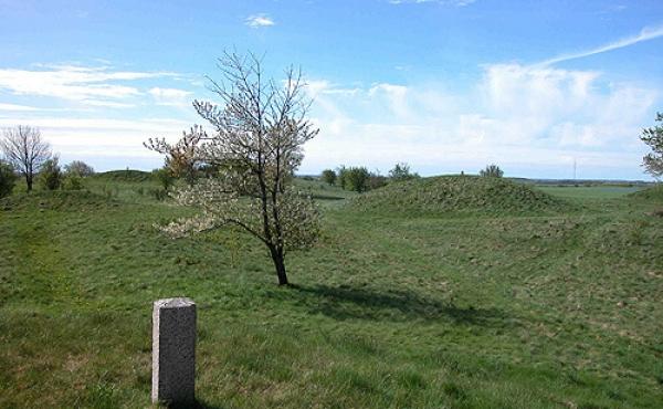 1: Thorsø Høje gravpladsen giver et fint indtryk af hvor tæt gravhøjene oprindeligt lå i bronzealderen. Her gravpladsen set fra nordøst.