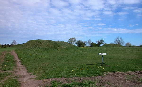 """5: Thorsø Høje set fra syd. I forgrunden til venstre ses langhøjen """"Melsækken""""."""
