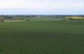 """3: I markerne omkring højgruppen ses stadig adskillige overpløjede gravhøje. Her på marken vest for langhøjen """"Melsækken""""."""