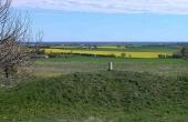 7: Fra Thorsø høje er der en flot udsigt over det omliggende landskab og Kattegat.