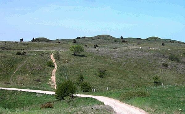 1: Trehøje-gravhøjene - her set fra syd - kroner det smukke overdrevslandskab i Mols Bjerge.